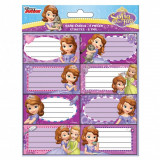 Lot de 16 étiquette Sofia Disney cahier livre classeur enfant