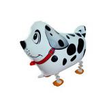 Ballon hélium chien qui marche 4 pattes