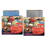 Cache col et masque Cars Snood tour de cou Echarpe enfant