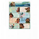 Lot de 16 étiquette Vaiana Disney cahier enfant