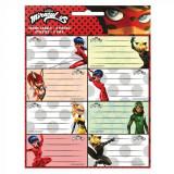 Lot de 16 étiquette Miraculous Ladybug Disney cahier enfant ecole voiture