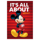 Plaid polaire Mickey Mouse Couverture raye