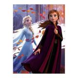 Plaid Polaire La Reine des Neiges 2 Couverture Enfant Frozen Elsa Ana