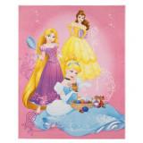 Tapis enfant Princesse 125 x 95 cm Disney 06 Haute qualite