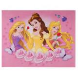 Tapis enfant Princesse 125 x 95 cm Disney 03 Haute qualite