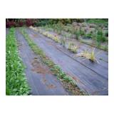Tissu anti mauvaise herbe noir 8 x 1.5 m tissus anti mauvaises herbes