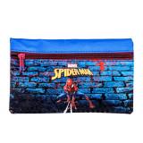 Trousse plate Spiderman 21 cm mur