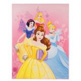 Tapis Princesse 125 x 95 cm Digital Aurore Belle Cendrillon Chateau